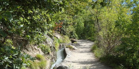 Hiking paths near Merano